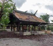 拝殿檜皮葺屋根の剥離